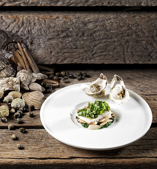 Angerichteter Teller mit Austern