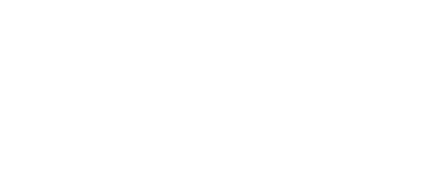 Logo Virtuoso
